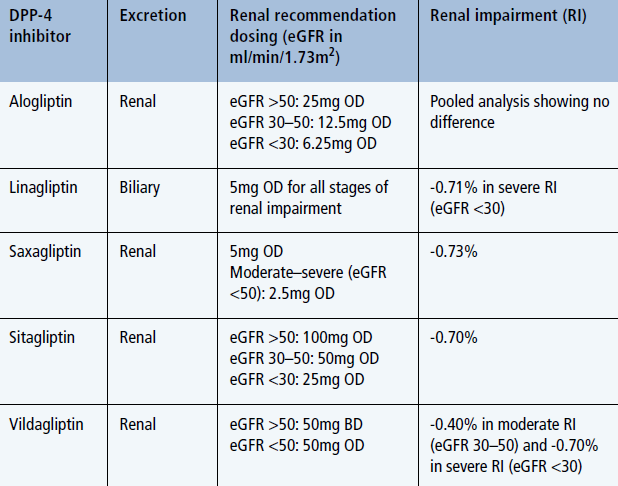Renal Safety Of Newer Medications Practical