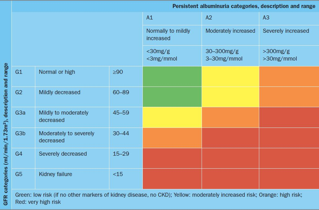 Managing Diabetes In The Presence Of Renal Impairment Prescriberprescriber