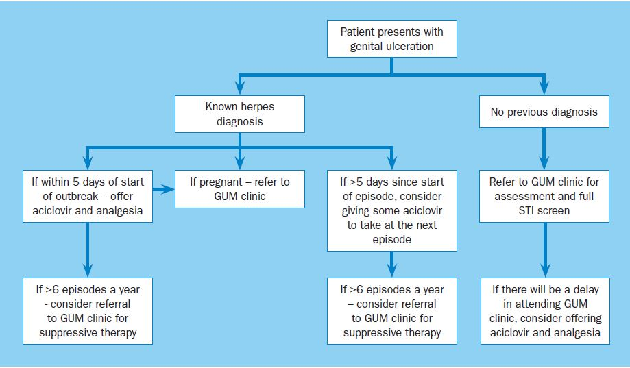 Management of genital herpes: a guide for GPs - PrescriberPrescriber
